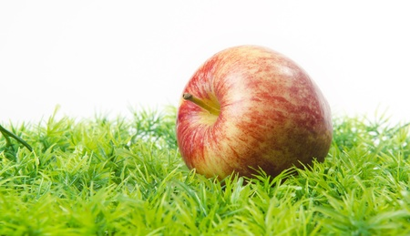 eating area: red apple lying on green grass Stock Photo