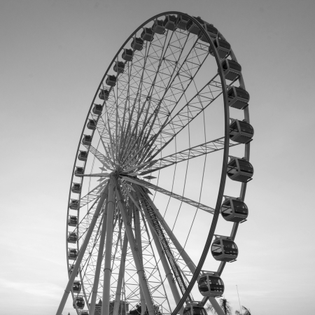 Beautiful large Ferris wheel in black and white