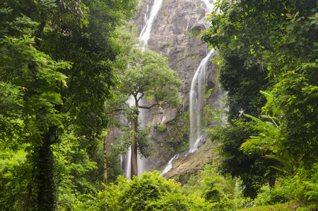 rung: Beautiful waterfall in the tropical forest,Thailand