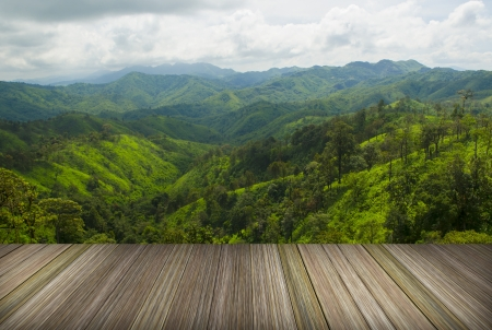 platform beside natural field, Tropical forests in Thailand