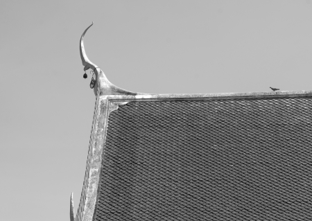 apex: Gable apex on the roof in temple