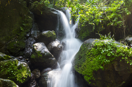 Tropical waterfall in rain forest photo