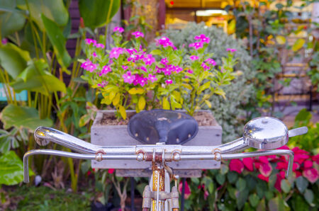 Old bicycle and flowers in colorful photo