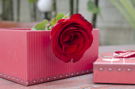 heart shaped stuff: Roses and gifts on the occasion of Valentine s Day