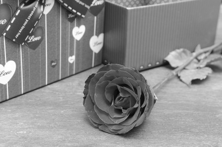 Roses and gifts on the occasion of Valentines Day. photo