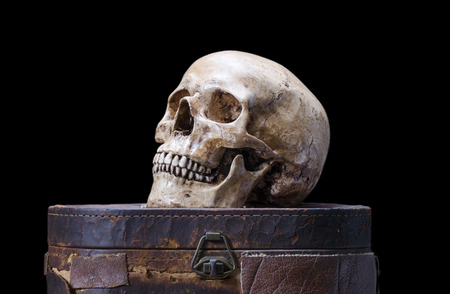 Still life with Side view of human skull on a black  photo