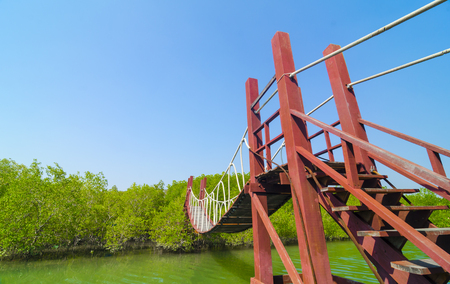 Red wooden bridge to a natural forest with blue sky, Thailand photo