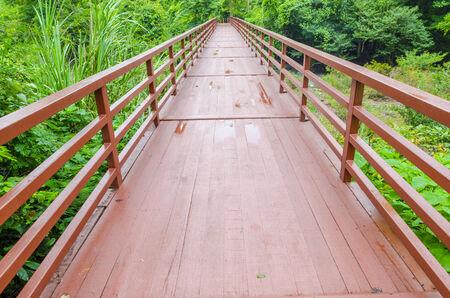 wood bridge to the natural site photo