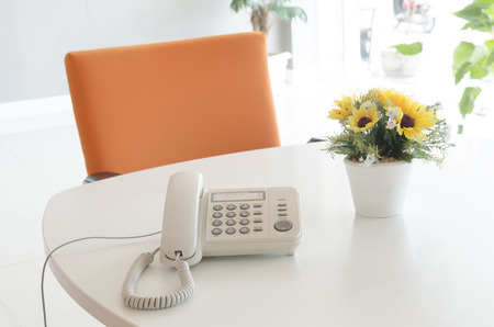 telephone and flower in vase on desk photo