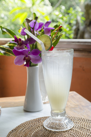 organic drinks: Healthy organic drinks served with traditional Bali food