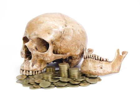 calavera pirata: Concepto Cráneo y monedas