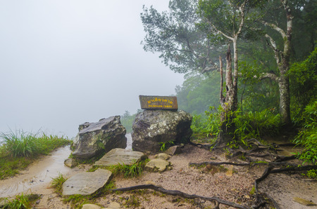 Khao Yai National Park, Thailand photo