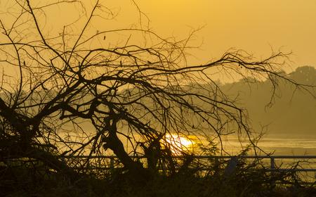 mekong: Sunrise on the Mekong River