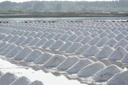salt: Mass of salt in the salt sea salt farm, Thailand location Stock Photo