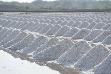 sal: Masa de sal en el mar salado granja de la sal