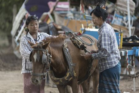 2 november: MANDALAY 2 November 2015, tourists hire horse carriage for ancient city tour in Ava, The Ava Kingdom was the dominant kingdom that ruled upper Burma (Myanmar) from 1364 to 1555.