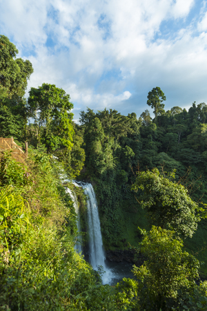 magic lily: Beautiful Unesco Tad Yueang Waterfall in southern Laos