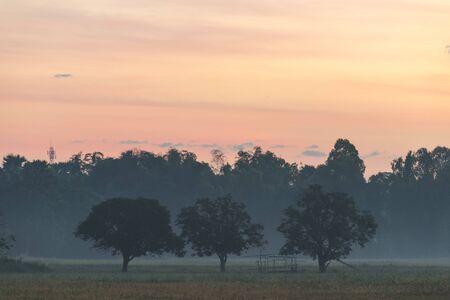 lanscape: nature lanscape sunrise