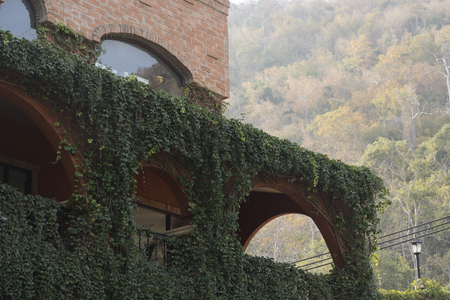 collina: part of Italian style house