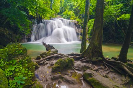 koi: Deep forest Waterfall in Kanchanaburi, Thailand