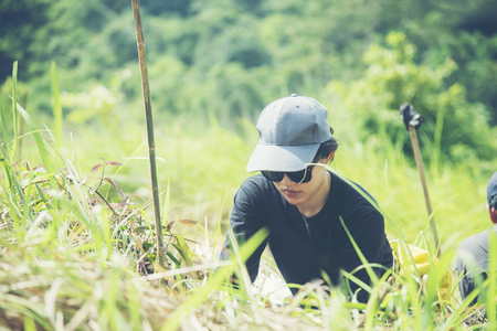 Asian women doing ecological reforestation, National Park in Thailand