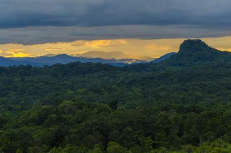 자연 현장, 태국, 세계 유산 사이트, 배경 및 벽지에 대 한 복잡 한 서양 숲의 풍경보기 스톡 콘텐츠 - 90833717