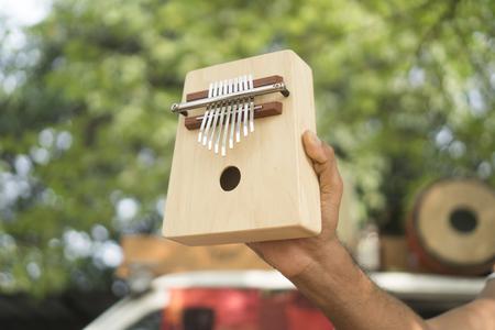 Wooden ethnic African instrument Kalimba