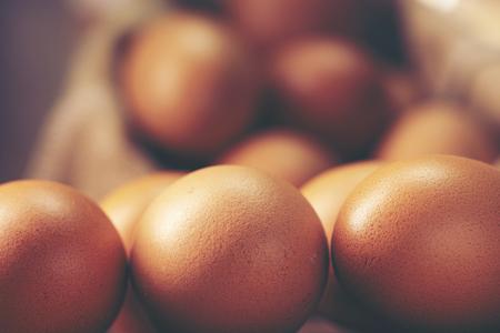 chicken egg product for food, vintage filter image