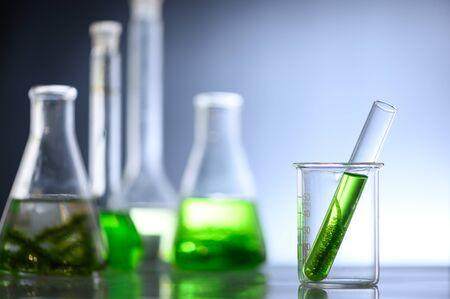 Investigación de algas en laboratorios, concepto de ciencia biotecnológica.