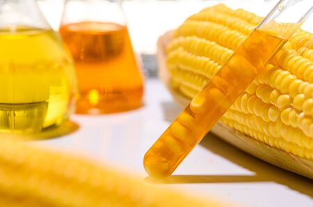 the natural product extract, oil and biofuel solution, in the chemistry laboratory 写真素材