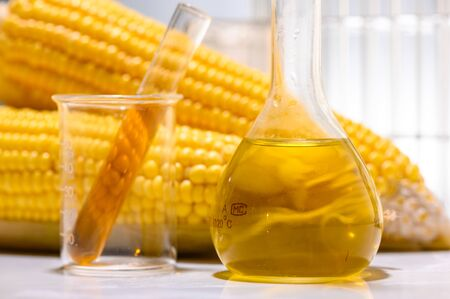 Biofuel or Corn Syrup, gasoline, energy, environmentalist