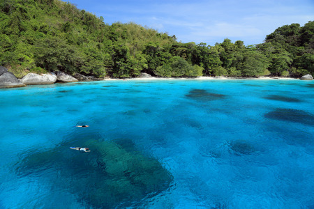 Snorkeling at Similan Islands Stock Photo - 37391410