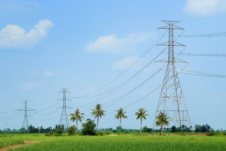 power lines: High voltage power lines in the up-country