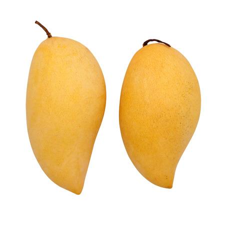 Zwei reife Mangos auf weißem Hintergrund Standard-Bild - 39993049