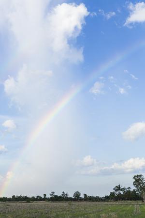 Schöner Regenbogen auf Reisfeld Standard-Bild - 59365019