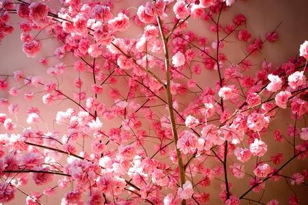 ティッシュの花
