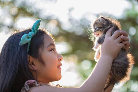 Little Asian girl holding Lovely persian kitten with sunshine in the park