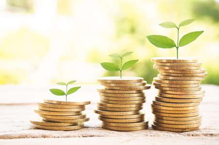 Geldstapel, Münzreihen für Finanz- und Bankkonzept, Geldwachstumskonzept Standard-Bild