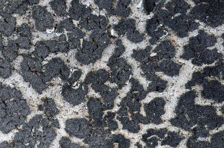 algae stains crack on concrete far away back photo
