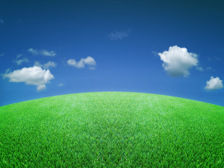 Grünes Gras blauen Himmel