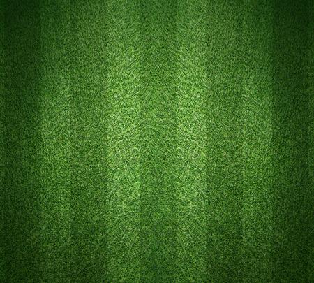 Grünes Gras, Fußball-Hintergrund