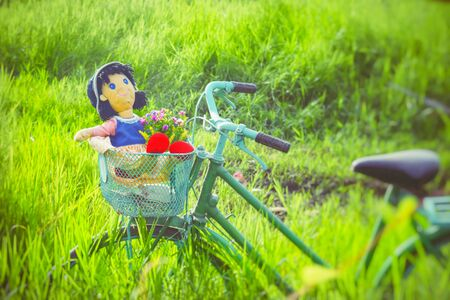 A doll on bike in field