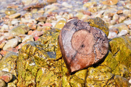 heavy heart: Heart-shaped coconut shell on the rock