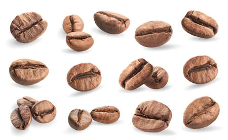 robusta: collection of coffee beans isolated on white background Stock Photo