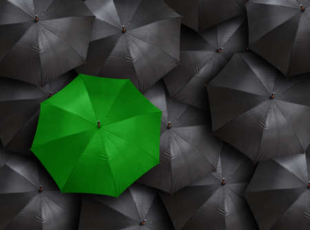 distinct: concept for leadership with many blacks and green umbrella