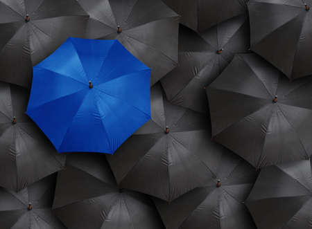 rainbow umbrella: concept for leadership with many blacks and blue umbrella