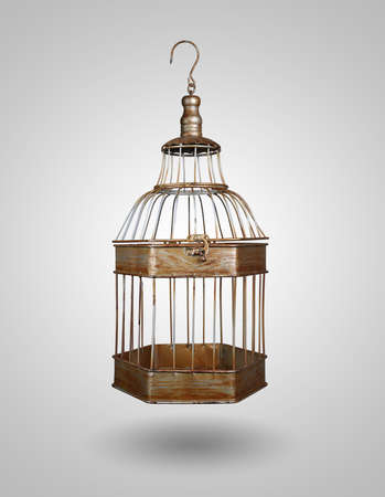 liberated: vintage bird cage on gray background Stock Photo