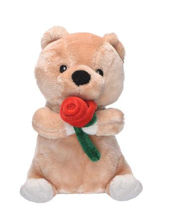 plush: plush toy bear isolated on a white background