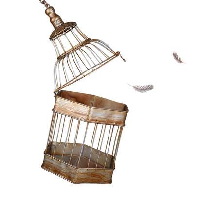 Echappant à la cage