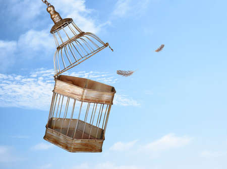 liberated: Escaping from the cage Stock Photo